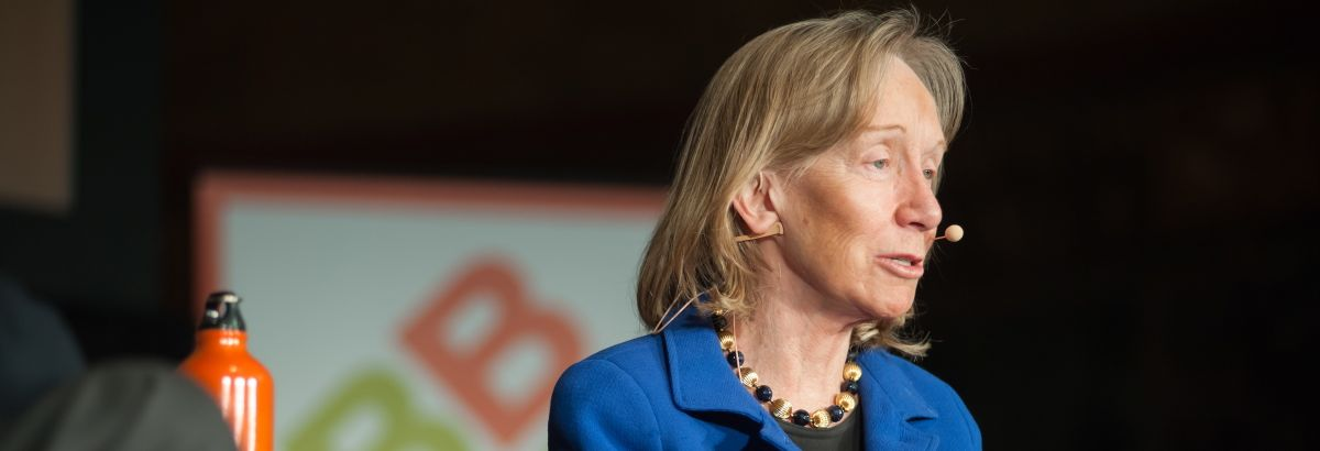 Doris Kearns Goodwin 2014